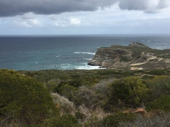 Cape of Good Hope 1