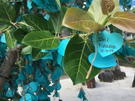 The had a wish tree and we added ours on there...