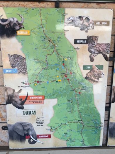 The map at each camp, showing what has been seen that day...
