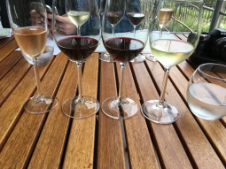 Wine tasting at Clos Malverne!
