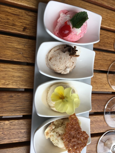 The ice cream pairing with the wine tasting!
