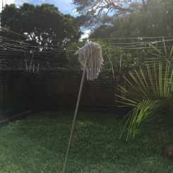 Our mop-drying system. (It's not perfect, though, because it rains every day!)