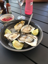 Oysters at another winery!