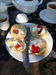 Did my scones correctly!! Tasty...
