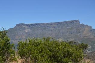 View of Table Mountain from Signal Hill...