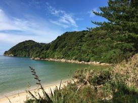Look how lovely Awaroa Beach is!