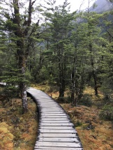 The incredibly well-constructed path...