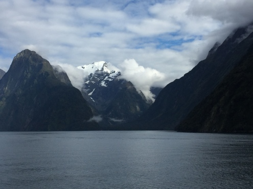 On our cruise on the Milford Sound...
