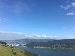 Otago Peninsula 3