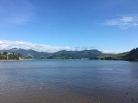 Otago Peninsula 8
