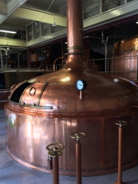 Speight's Brewery Tour 7